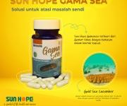 Gamasea 1